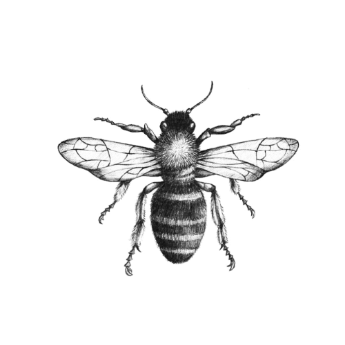 Manchester Tattoo Appeal - Bee Design 3 | Tattumi